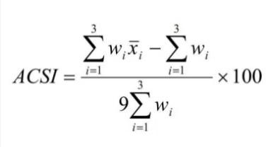 customer centricity - il cliente al centro formula indice ACSI