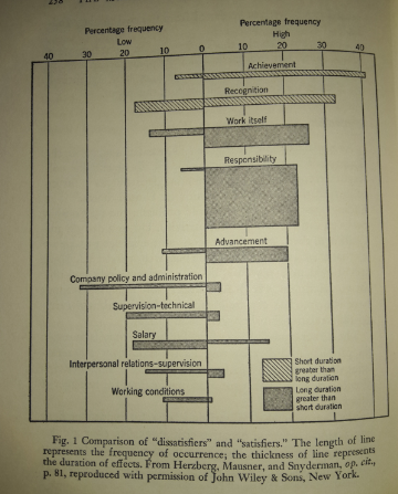 patrizia-agostinis-operations-management-unovirgolasei-teoriax-teoriay-mcgregor-fattori-motivazionali